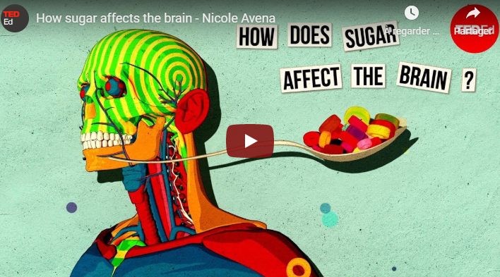 How sugar affects the brain TED-Ed